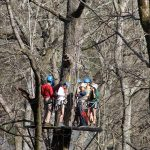 Eagle's Nest on the High Ropes Canopy Zipline